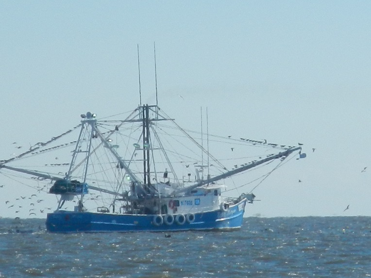 Shrimp Boat at Work: Shrimping in the Carolinas and Georgia must be long days of hard work. The nets are huge