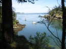 Rolfe Cove, Matia Island, San Juan Islands, WA