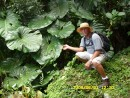 Bill and one of the many elephant ear plants.