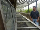 Cages to protect the baby tortoises from non-endemic predators such as rats, pigs, dogs and feral cats. Endemic species (