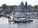 Inner Harbour Marina with Parliament building in background