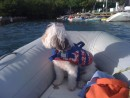 Sophie is on watch during a dinghy ride to the dock.