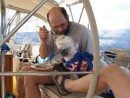How many other dogs are getting hand fed French toast for breakfast while sailing in the Caribbean 1500? BTW, that spot on the top of my head is from repeatedly banging my scalp on the dodger frame as I climb from the salon into the cockpit.