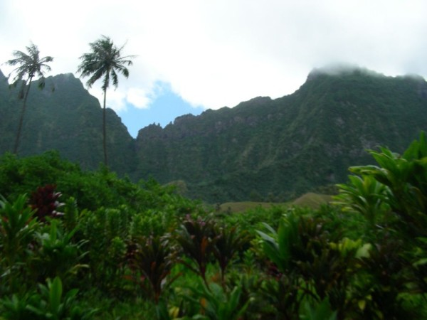 view along trail to waterfall on Fatu Hiva