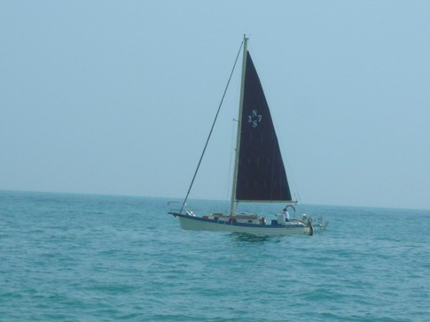 Notice their sail today?  Luffing too.: Notice their sail today?  Luffing too.