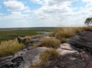 Vistas from the top of Ubirr Rock- as far as the eye can see!