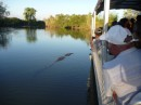 establishing his territory- this croc decides he needs to go in front of our tour boat. Guess who got to go first?!