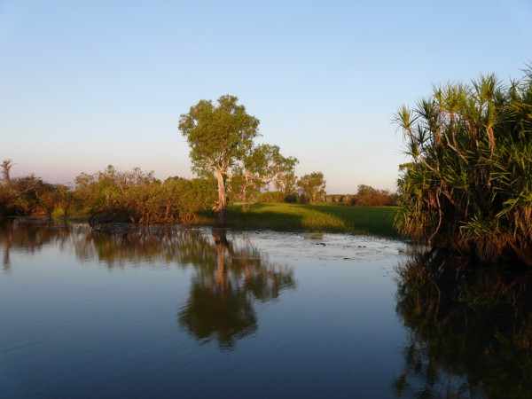 Reflections on the billabong