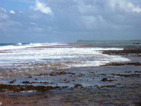outer reef, surf breaking across the reef