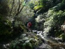 Waterfall Hike, Ports Fitzroy with Sherry and Gordon from S/V Serenity