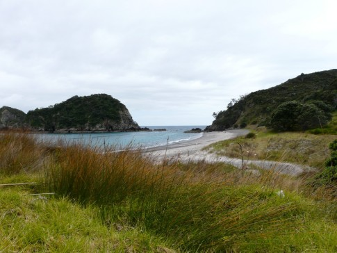 Motorua Island- views beckon as you hike the beautifully maintained trail around the island
