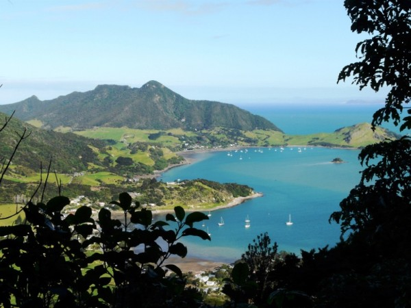 Mt Manaia, Bream Head
