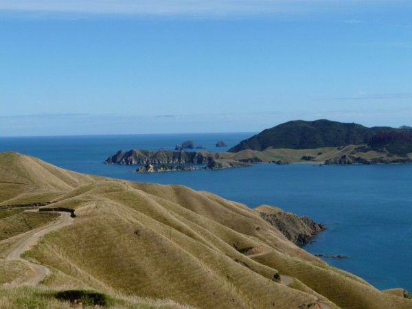 Looking towards Durville Island, near French Pass