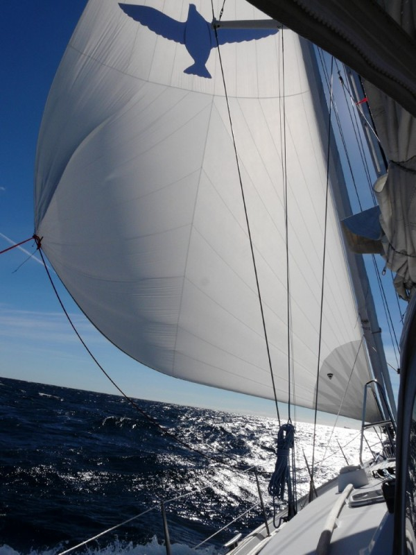 We flew Bluebird, our code Zero sail for the first 36 hours, not a drop of water splashed topsides!