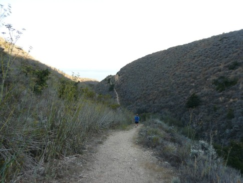 hilly run on the Del Norte Loop Hiking trail