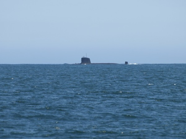 A submarine surfaced in front of us as we headed north again.