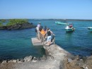 Our gang going back to our tender - Isla Isabela
