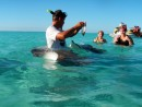 Feeding the rays with Grace and Maelisa in Moorea