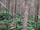 Kids doing the aerial obstacle course at Adventure Forest in Whangarei