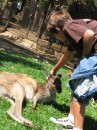 Cole making friends w/a kangaroo