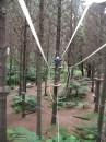 Tom balancing at Adventure Forest in Whangarei