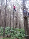 Cammi getting challenged on the adreneline course at Adventure Forest in Whangarei, NZ