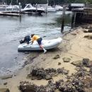 Balls Head Bay.: Trying out a new spot to leave the dinghy.