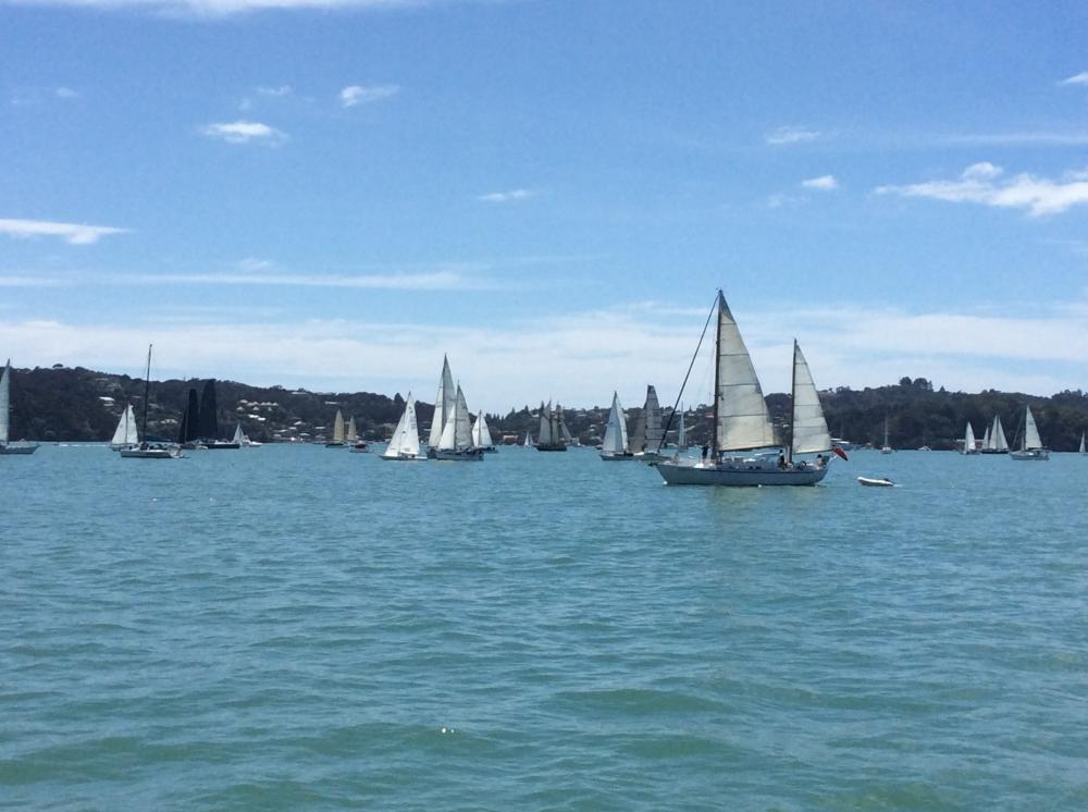 TALL SHIP RACE: Sailing along with the racers.