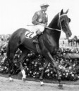 Tobin Bronze going out in the 1967 Melbourne Cup.