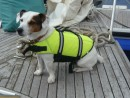 Admiral Nelson, on deck