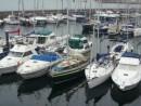 In Vigo marina