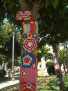 Typical in Portugal and we have seen it in Spain as well.  Trees are dressed in parks or sometimes just on the street.  It is called yarn bombing and is believed to have started in the US and has spread worldwide.  Not sure what the motive is other than to bring color and to personalize areas in the communities.