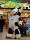 The dancing cow at the super marcado...grocery store. The cow was a good dancer!!!!