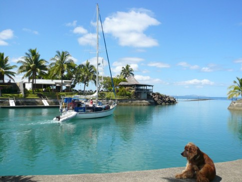 the entrance to Vuda Marina...and Amigo in the foreground