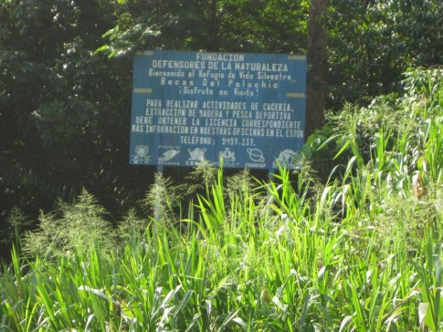 Environmental organization sign at the mouth of Rio Oscuro