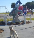 Murphy at a Vero Beach park