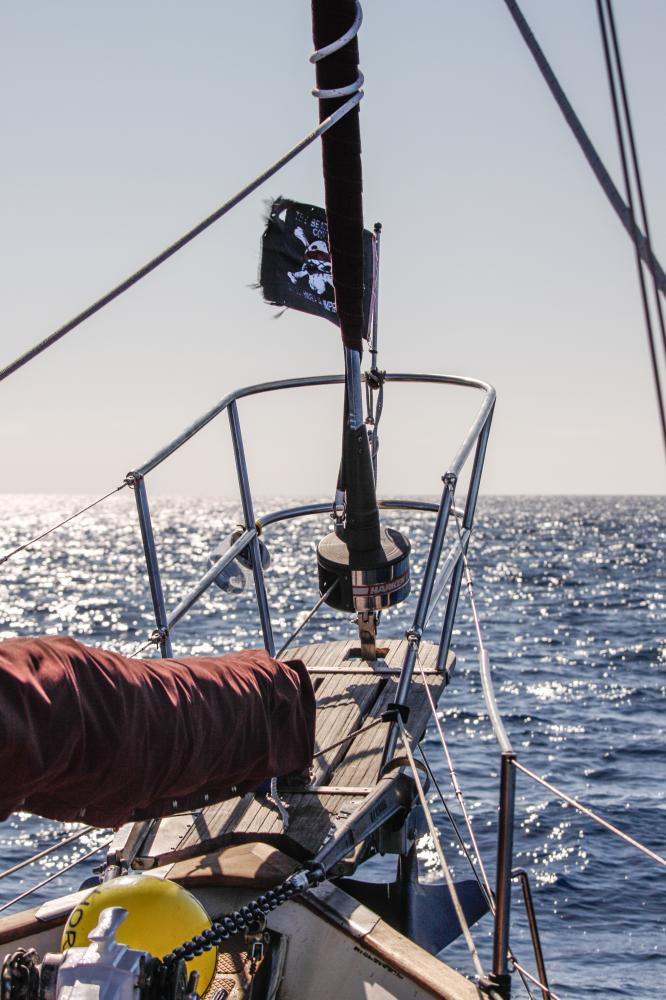 Pirated cruising tales
