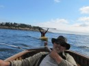 Sailing the Grandy skiff with Lisa in tow at Sucia Island.