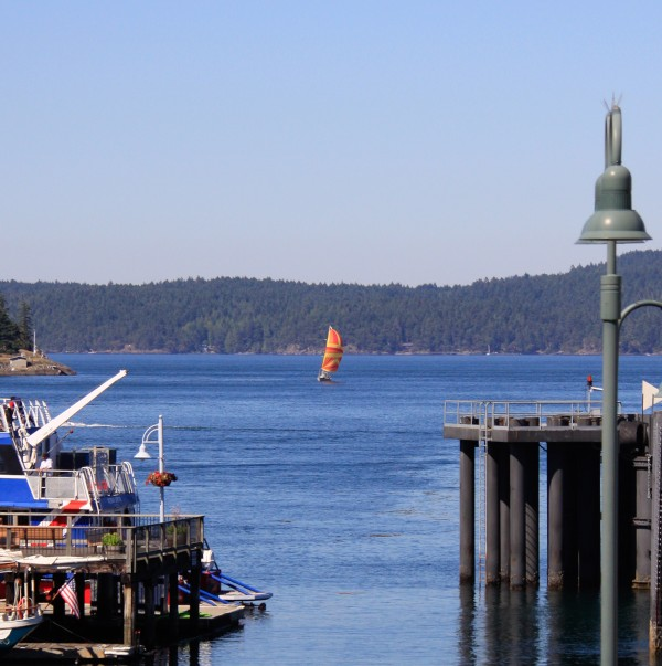 Spinnaker on the bay at Friday Harbor