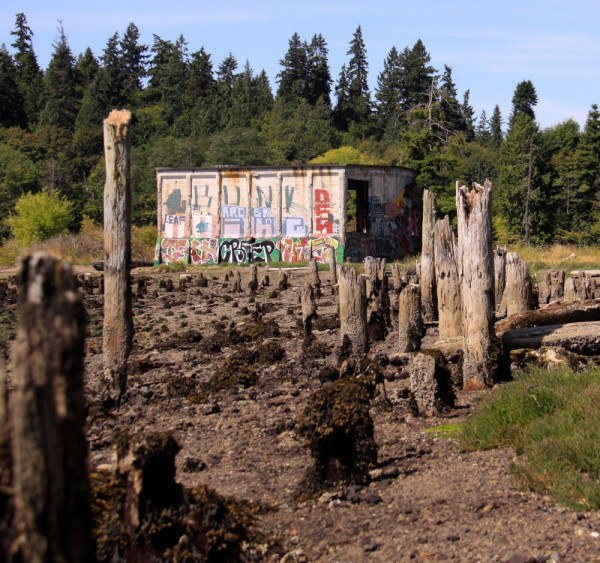 From ranks of rotting pilings to a gallery of counter-culture art...