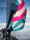 The beautiful cruising spinnaker is up
