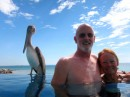 Back to Costa Baja.  Bob and Karyn relax with the pelicans