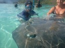 The tour boats bring tourists here to play with the sting rays.  The are fed by the guides so are tame and unafraid of people
