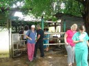 The doctors visiting the pig stables,  the 2 girls on the right were the pediatricians