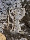 Petroglyphs at Down Rope