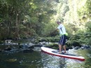Paddle boarding upriver, Whangerei, NZ