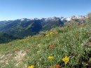 Reynolds Peak hike, Big Cottonwood Canyon, UT