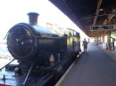 Steam Train to Paignton