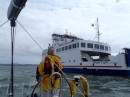 Shar running close quarters with the Ferry going up the channel into Lymington...Very tight channel