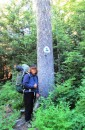 Alison finds the PCT symbol and trail entrance after a 1 day detour off the trail near Tacoma.